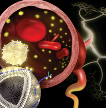 Image: Dr. Kong and others demonstrated that their fastener molecule readily inserted itself into the membrane of pre-made liposomes. Gadolinium stably associated with the modified nanoparticles in solution, and experiments in animal models showed that these nanoparticles produced clear diagnostic images (Photo courtesy of Janet Sinn-Hanlon, DesignGroup@VetMed, University of Illinois).