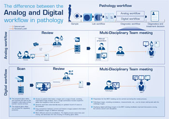 Image: A graphic displaying the difference between analog and digital workflows in Pathology (Photo courtesy of Sectra).